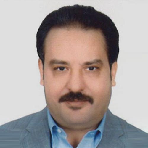 Hany Mohamed Elwakil